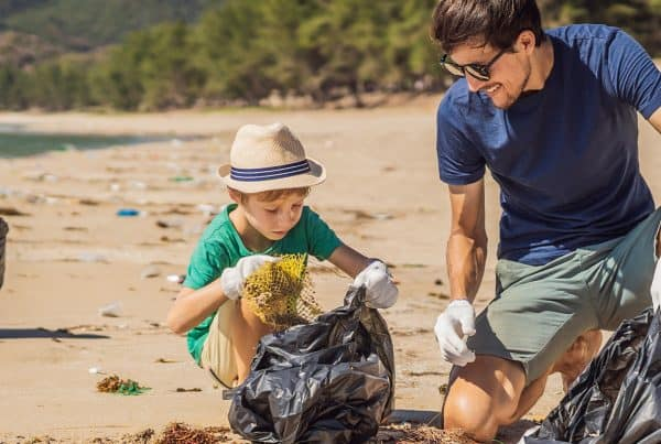 Clean Up Cairns - Grab A Bin And Do Your Bit